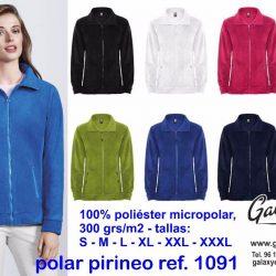 1091 pirineo
